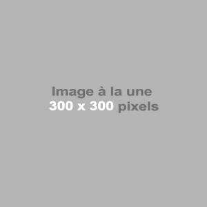 500X500-300x300